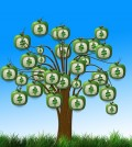 pieniadze-drzewo