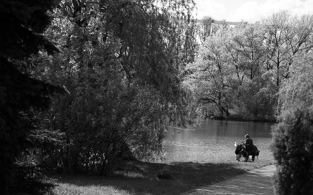 Park w Katowicach