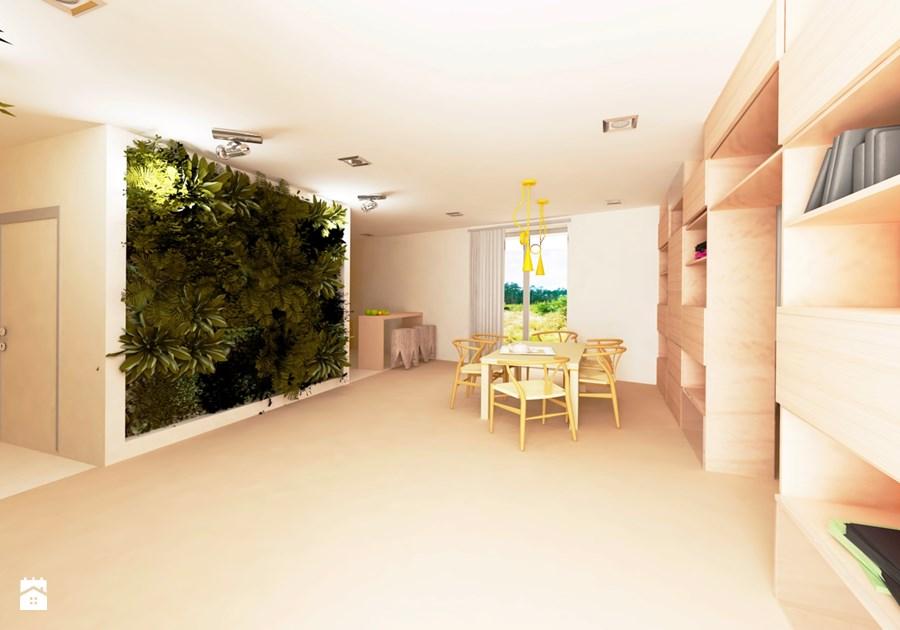 zielona ściana rośliny