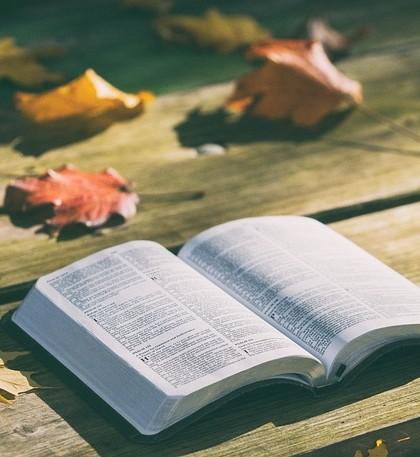 Książka i czytanie