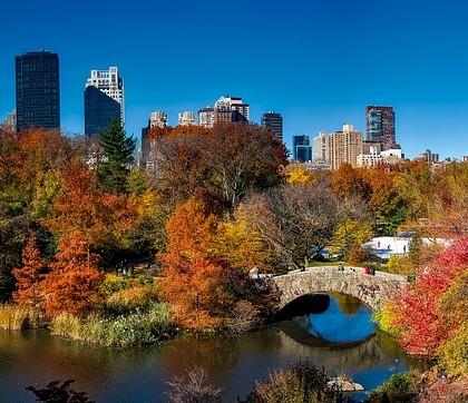 Jesień w Central Parku